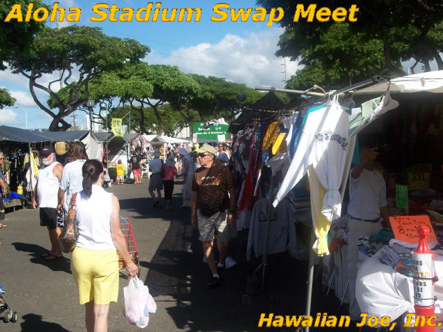 Hawaiian Joe Travel